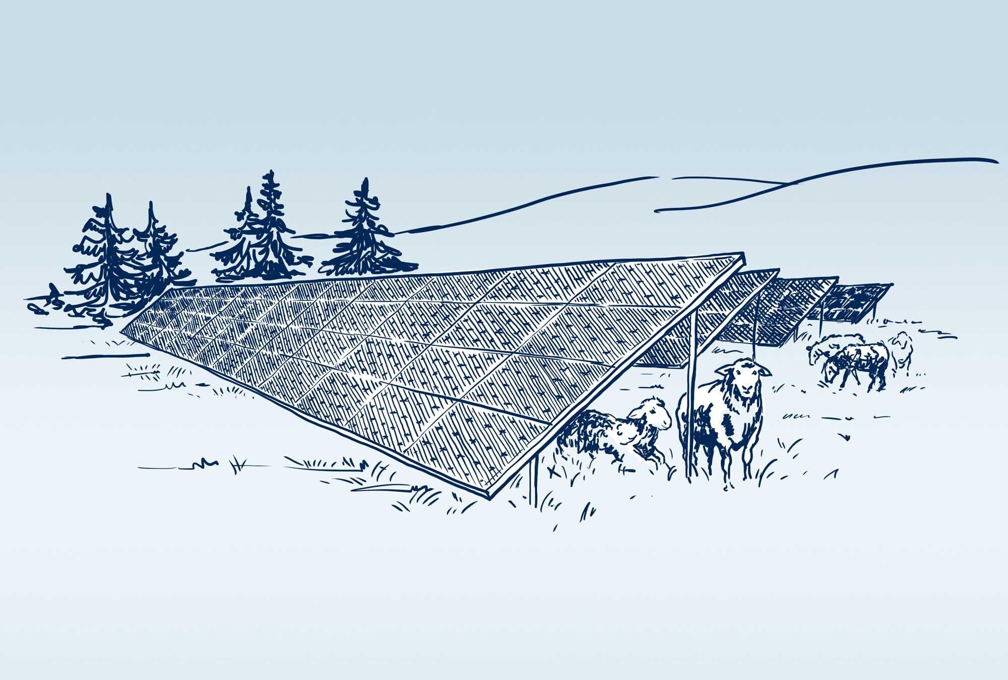 Solaranlage | Haslinger / Nagele, Illustration: Karlheinz Wasserbacher
